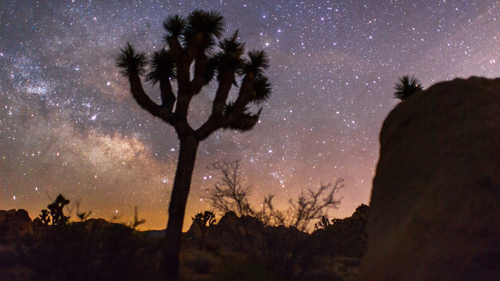 Joshua Tree National Park and the Milky Way - Timelapse