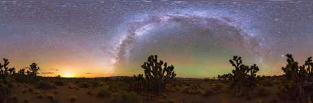 Nevada - Joshua Tree Forest and the Lights of Las Vegas - 360