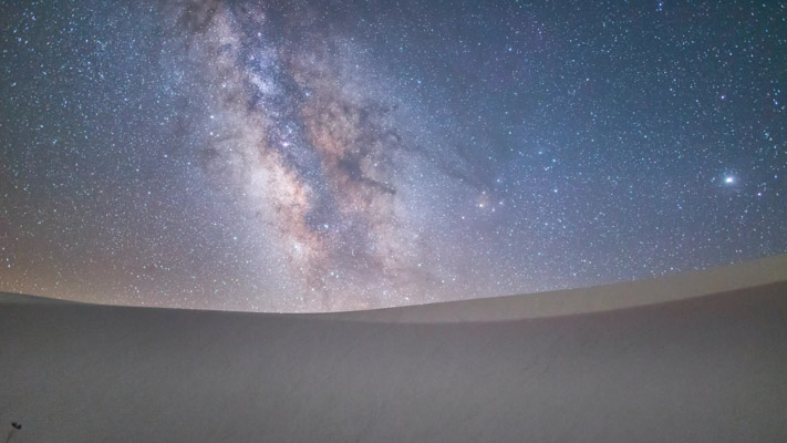 New Mexico - Whitesands - Flower Nightscape